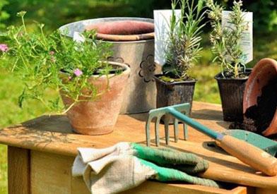 Certificados de profesionalidad mf0522 1 operaciones for Mantenimiento de parques y jardines