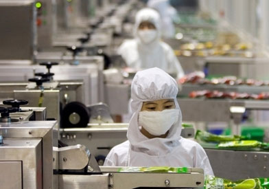 Certificados de profesionalidad mf0546 1 higiene general for Programa de limpieza y desinfeccion en industria alimentaria
